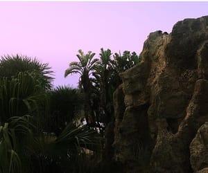 palm trees, Cadiz, and nature image