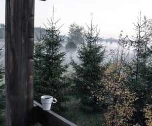 cabin, coffee, and forest image