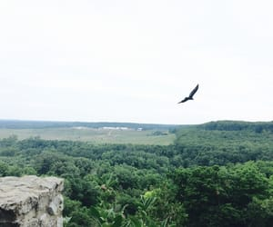 cliff, freedom, and mountain image