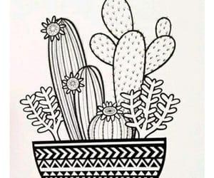 arte, cactus, and dibujo image