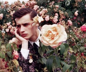 flowers, boy, and rose image