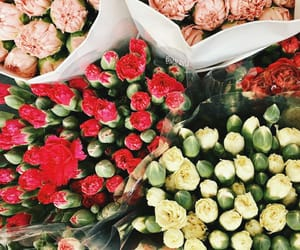 aesthetic, bouquets, and soft image