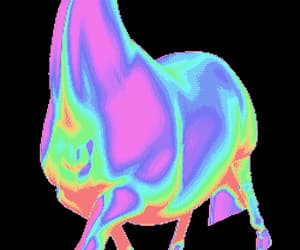 animal, art, and colours image