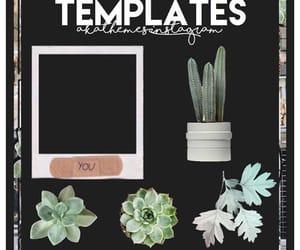 editing, theme, and templates image