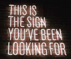 sign, quotes, and neon image