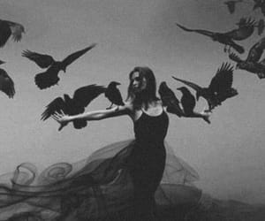 bird, girl, and witch image
