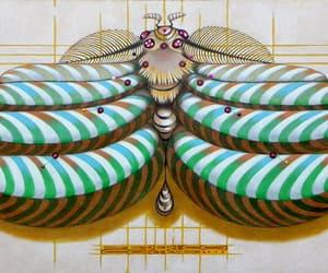 arte, farfalle, and butterflies image