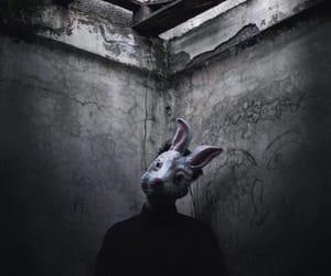 basement, bunny, and bunny mask image