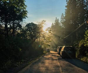 car, dust, and nature image