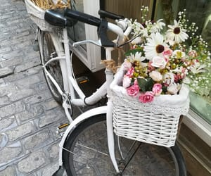 bicycle, lovely, and vintage image