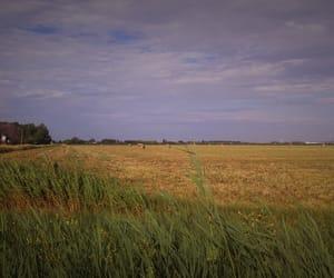 autumn, farm, and field image