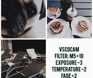 ideas, vsco, and vscocam image