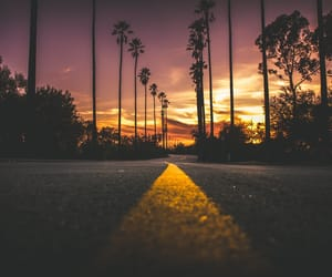 road, sunset, and tree image