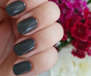 flowers, spring, and nails image