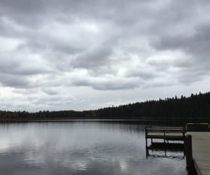forest, dock, and gloomy image