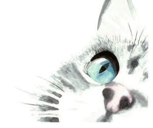 cats, cute, and wallpaper image