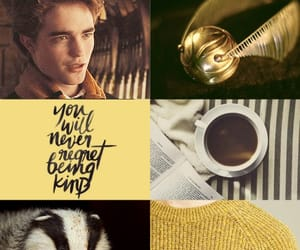 badger, cedric diggory, and cup image