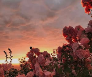 cloudy, pink, and sky image