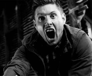 black and white, dean, and gif image