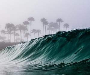 palm trees, wave, and sea image