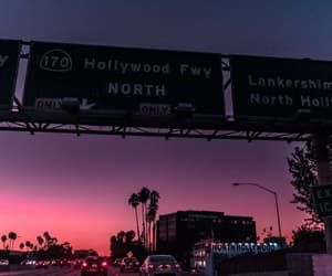 city, palmtrees, and hollywood image