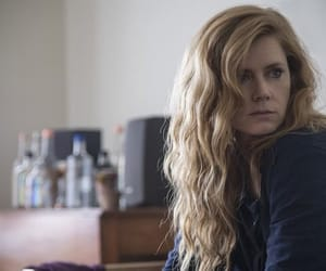 Amy Adams and sharp objects image