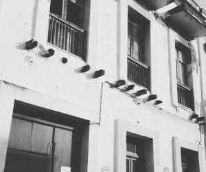 blanco y negro, edificio, and edificios image