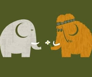 elephant, love, and hippie image