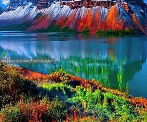 awesome, lol, and colorful image