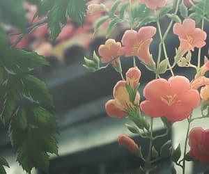 gif, flowers, and anime image