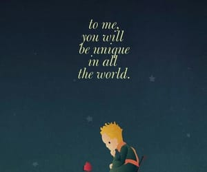 quotes and little prince image