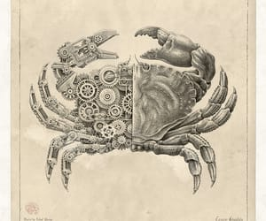 crab, robots, and steampunk image
