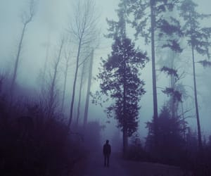 alone, forest, and dark image