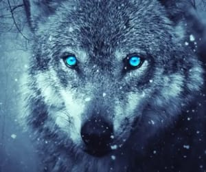 beautiful, blue, and bois image