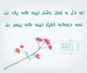 wta, dl, and kurd image