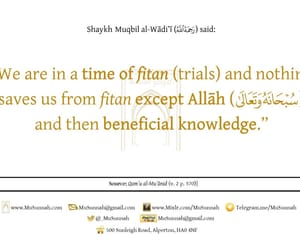 knowledge, fitna, and ilm image