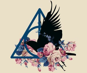 deathly hallows, harry potter, and ravenclaw image