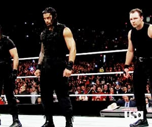 gif, roman reigns, and wwe image