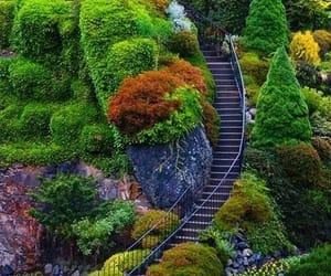 naturaleza, paisaje, and escaleras image
