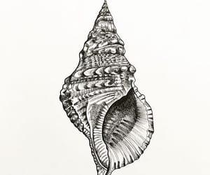 art, design, and draw image