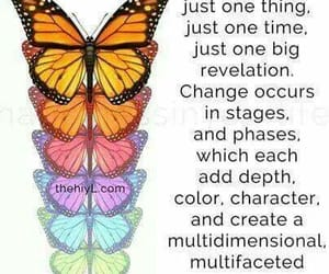 butterfly, change, and stages image