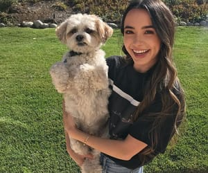 dog, merrell twins, and veronica merrell image