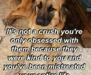 crush, obsession, and sad image