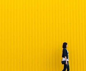 color, photography, and bright yellow image