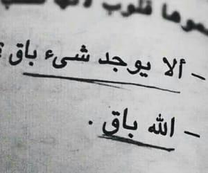 arabic, كلمات, and حكم image