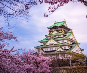 japan, landscape, and visit image