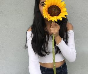 beautiful, sunflowers, and cute image