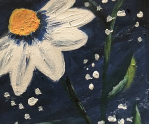 daisys, picture, and art image