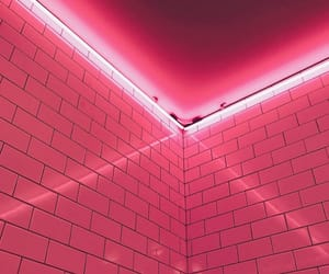 background, neon lights, and pink image