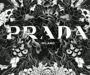 Prada, fashion, and milan image